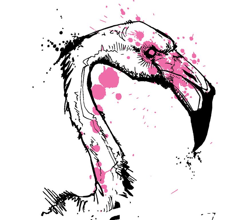 fb-bird-pink